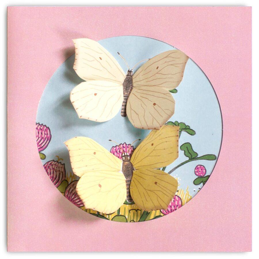 Moja zbierka motýľov