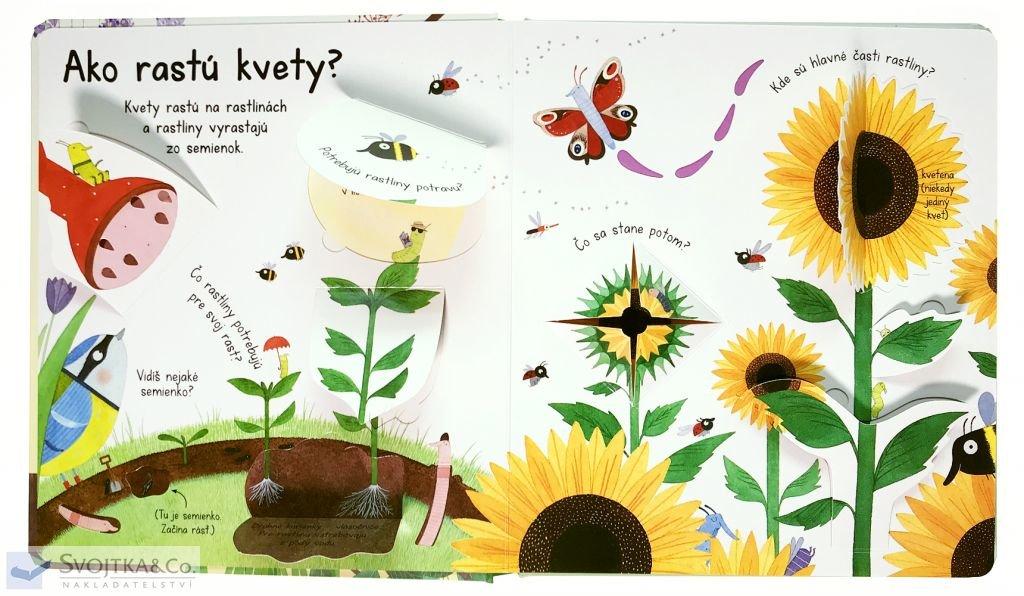 Ako rastú kvety?