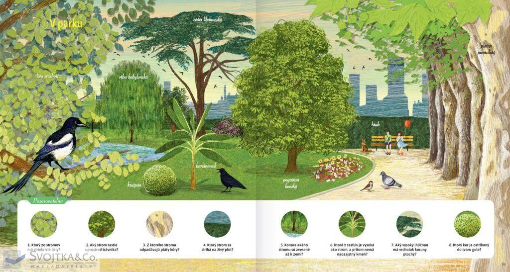 Stromy a iné dreviny