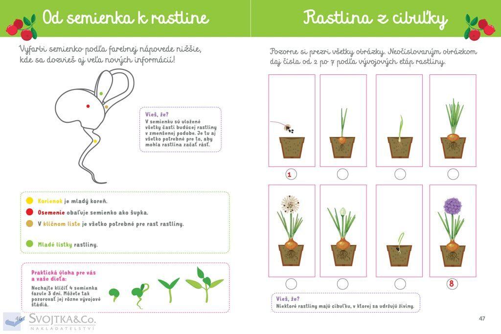 Môj veľký zošit Montessori Objavuj prírodu