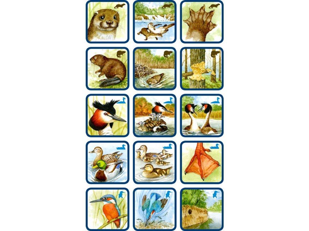 Poznáš naše vodné zvieratá?
